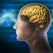 Mozak i učenje