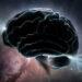 mozak, savjest