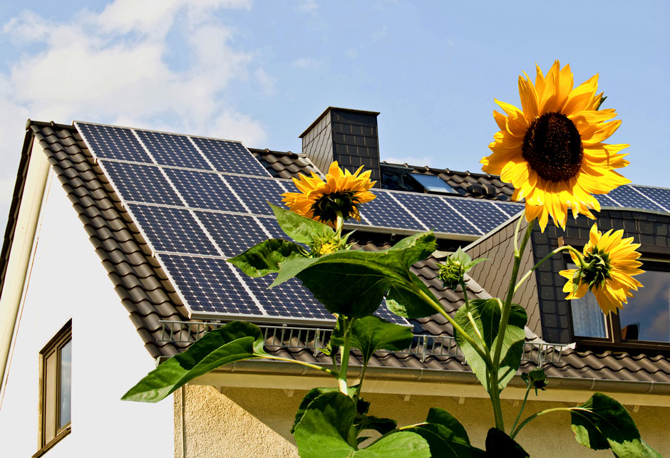SolarAsolarni paneli energija cells on a roof with sun flowers in the foreground