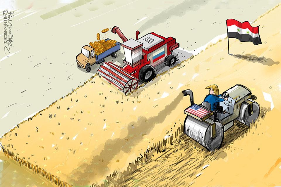 Rusija postaje lider za trgovinu žitaricama na Bliskom istoku