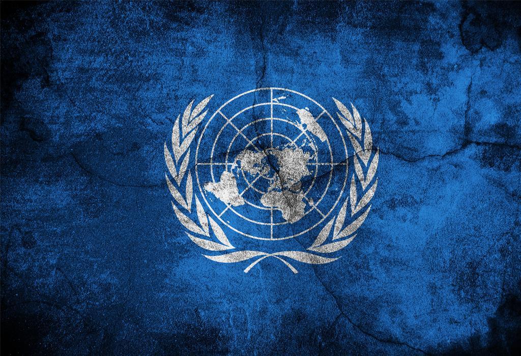 svjetska zdravstvena organizacija