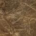 Nazca linije